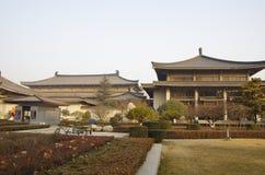 Shaanxi historiemuseum Arkivbild