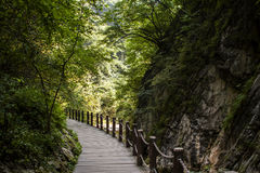 Shaanxi Qinling gold gorge scenery Royalty Free Stock Image