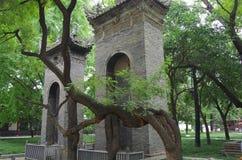 Shaanxi xi een 'kleine wilde ganspagode royalty-vrije stock afbeelding