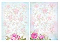Shabby κομψά υπόβαθρα με τα τριαντάφυλλα Στοκ Εικόνα