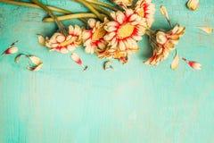 Τα όμορφα λουλούδια συσσωρεύουν σε ένα τυρκουάζ shabby κομψό υπόβαθρο, τοπ άποψη, σύνορα Εορταστική κάρτα χαιρετισμού ή πρόσκληση Στοκ εικόνα με δικαίωμα ελεύθερης χρήσης