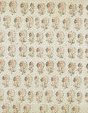 Shabby Chic antique floral wallpaper background Stock Photography