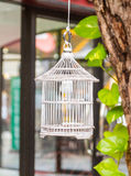 Shabby chic bird cage. Stock Images