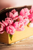 Tulips in book Stock Image