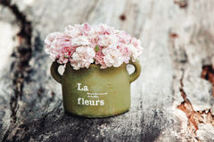 Shabby chic flowers Royalty Free Stock Image