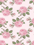 Shabby chic rose Stock Image