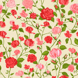 Shabby chic rose background. Shabby Chic Rose Pattern and seamless background. Ideal for printing onto fabric and paper or scrap booking. Cottage chic style stock illustration