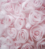 Shabby Chic Rose Background Royalty Free Stock Image