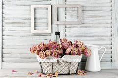 Shabby chic still life Royalty Free Stock Images