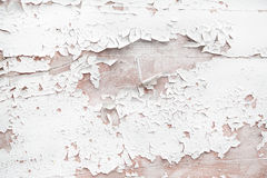 Shabby chic style or vintage background of white wood. Royalty Free Stock Photo