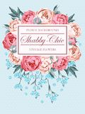 Shabby-chic vector background Royalty Free Stock Images