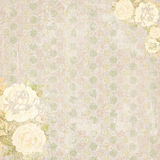 Shabby Chic vintage floral background with roses Royalty Free Stock Photo