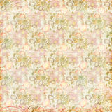 Shabby Chic vintage flowers floral grungy background Stock Images