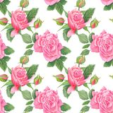 Shabby Chic Watercolor Pattern royalty free illustration