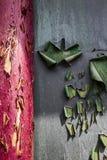 Shabby door. Faded, shabby wooden outside door stock photo