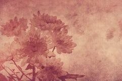 Shabby floral ανασκόπηση Στοκ φωτογραφία με δικαίωμα ελεύθερης χρήσης