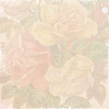 Shabby flowers wallpaper. Faded paper background with flowers Stock Photos