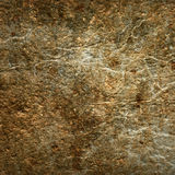 Shabby fur texture Royalty Free Stock Image