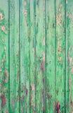 Shabby green door Royalty Free Stock Photos