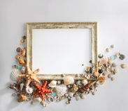 Shabby picture frame with blank space inside, and shells in form Royalty Free Stock Photography