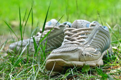 The shabby of sports shoes in the young grass Royalty Free Stock Images