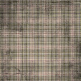 Shabby Tan Plaid Royalty Free Stock Images