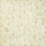 Shabby vintage floral rose background royalty free stock image