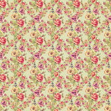 Shabby vintage roses floral background repeat Royalty Free Stock Image