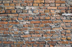 Shabby wall from red bricks Stock Images