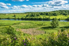 The Shacha river in Kostroma oblast, Russia. Royalty Free Stock Images