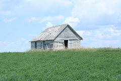 Shack. A weathered barn shack sits alone in the field on a bright and sunny day royalty free stock photo