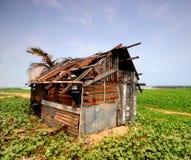Shack. Tin shack shed on the beach Royalty Free Stock Photo