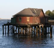 Shack in Boston Harbor. Abandoned shack in Boston Harbor, Massachusetts Royalty Free Stock Photo
