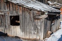 Shack en bois dans le jour d'hiver avec la neige fraîche sur le toit Photos libres de droits