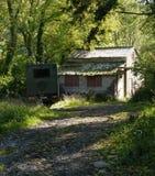Shack, en el bosque, monótono en luz del sol filtrada foto de archivo libre de regalías