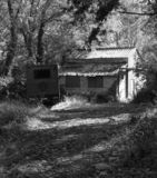 Shack, en el bosque, monótono en luz del sol filtrada imagen de archivo