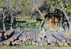 Shack and logs Royalty Free Stock Images