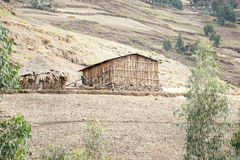 Shack of natives near Ambikwa camp, Simien mountains Royalty Free Stock Images