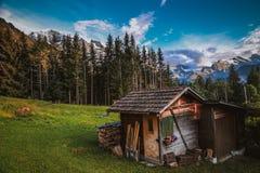Shack nelle alpi svizzere Fotografia Stock