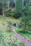 Shack in the woods. A fell trough shack in the forest stock photos