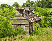 Shack in woods Stock Photo