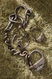 Shackles. Archaeological territory of Russia Stock Image
