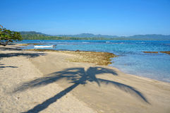 Shade of palm tree on a peaceful beach. Caribbean sea, Puerto Viejo de Talamanca, Costa Rica Royalty Free Stock Images