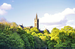 Shade trees in the main building of the University of Glasgow Royalty Free Stock Images