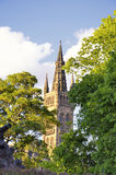 Shade trees in the main building of the University of Glasgow Stock Image