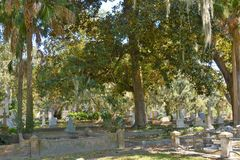 The shade trees make the cemetery a wonderful place to walk and remember. The cemetery has been a local landmark for many years and is a wonderful memorial for royalty free stock photo