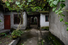 Shaded alley under grape trellises between ancient Chinese house Royalty Free Stock Images
