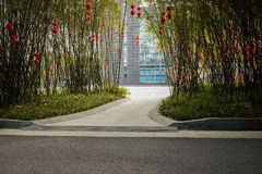 Shaded asphalt road in bamboo before modern building on sunny sp Royalty Free Stock Photo