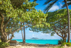 Shaded bench on a beautiful beach Stock Photo