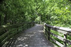 Shaded boardwalk in the woodlands. Summer sunlight and shade on wooden boardwalk. Canawaugus park in Scottsville, NY royalty free stock photos